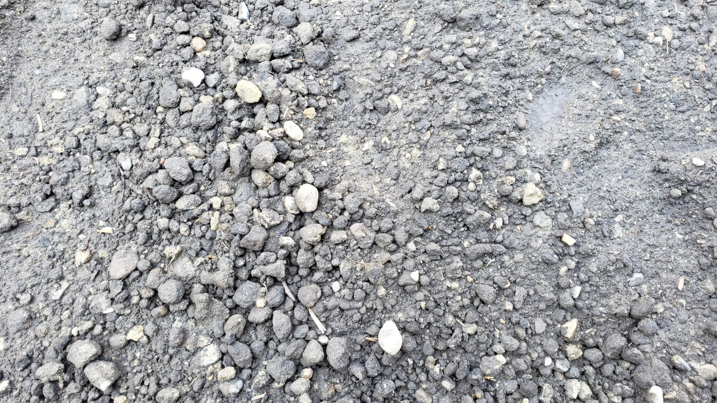 Clumpy Topsoil-20190601_154002_1559425281357.jpg
