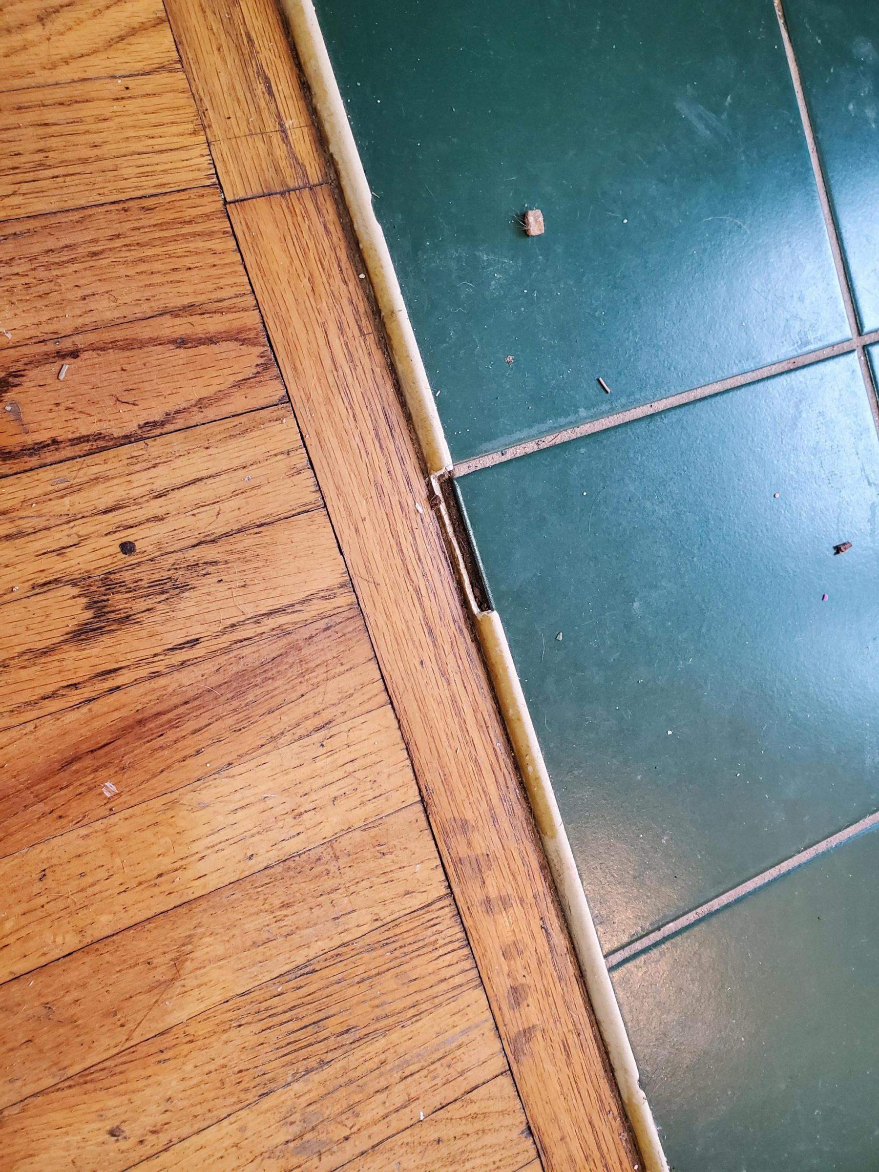 Tile Transition Strip Damaged Diy