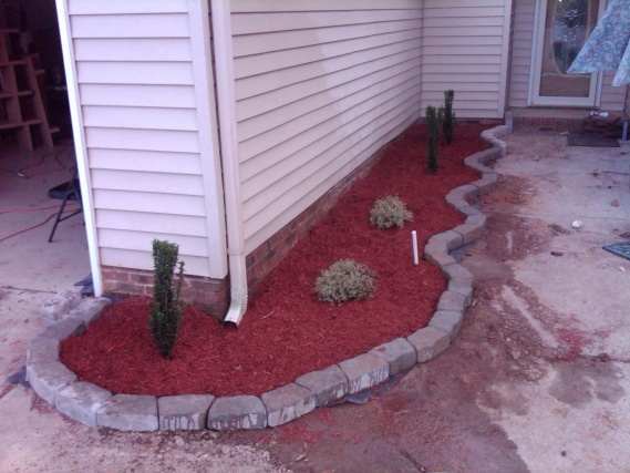 Looking to bring life to my front walk area on a decent yet slim budget.-210-front.jpg