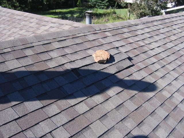 Roofers Hall Of Shame.-22-2.jpg