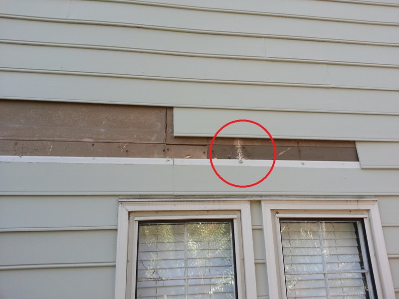 Exterior drywall roofing siding diy home improvement for Exterior wall sheathing options