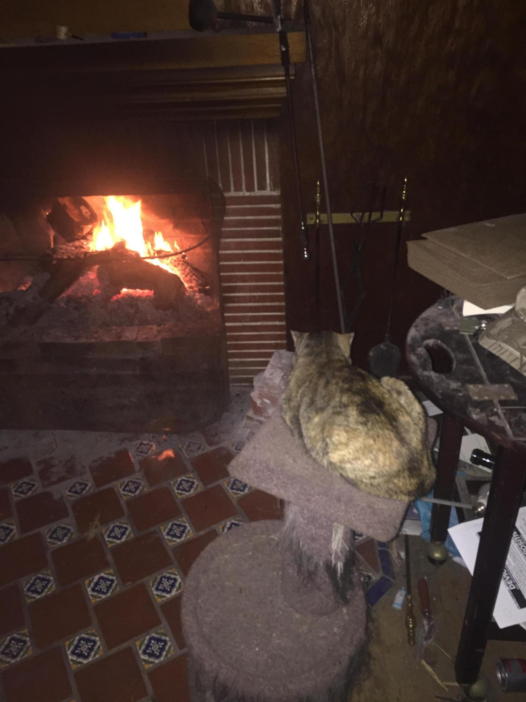 """""""Back Puffing"""" Fireplace-3f4bb98f-f3af-4151-a9d7-3a79b9a0fabb_1546396632078.jpg"""