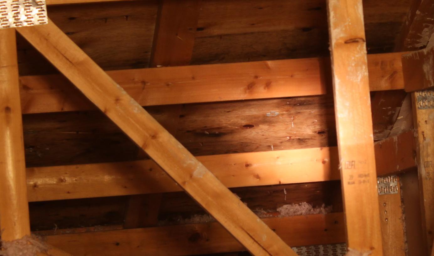 Leaky roof?-4.jpg