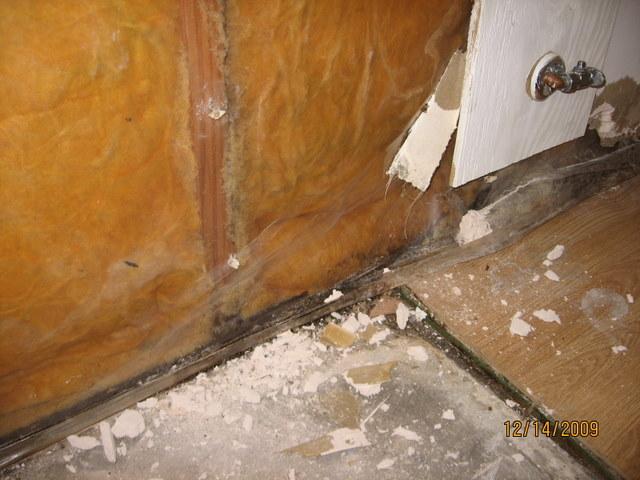 Unintended kitchen remodel-4img_3254.jpg