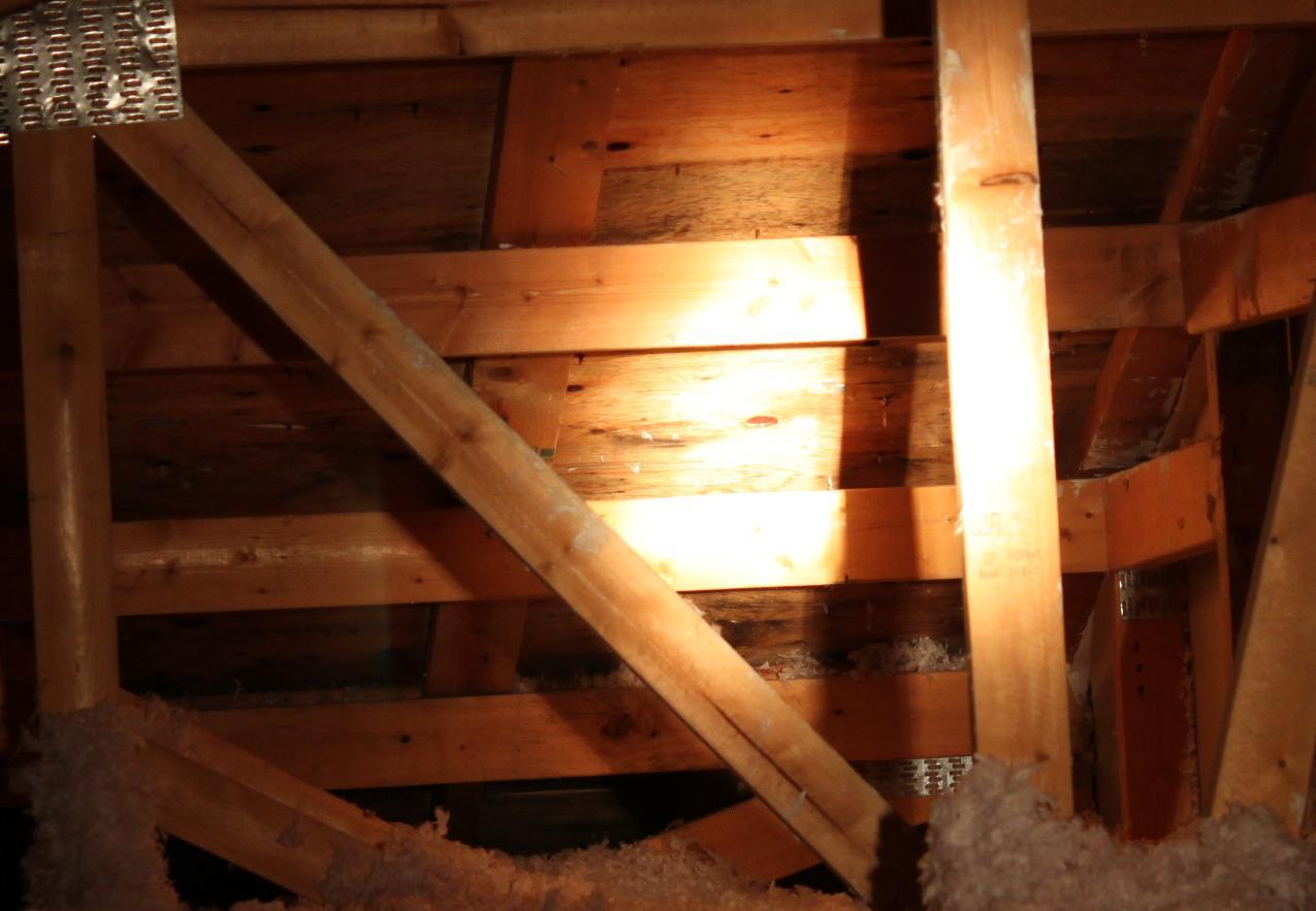 Leaky roof?-6.jpg