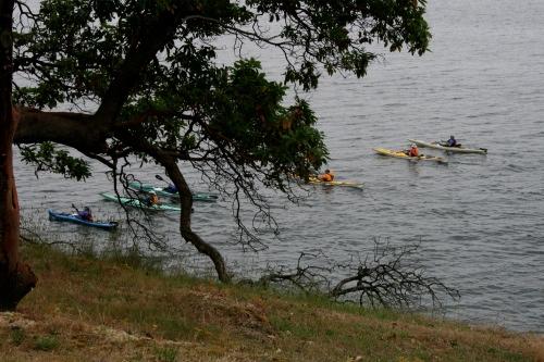 Gulf Island Building.-6-kayaks.jpg