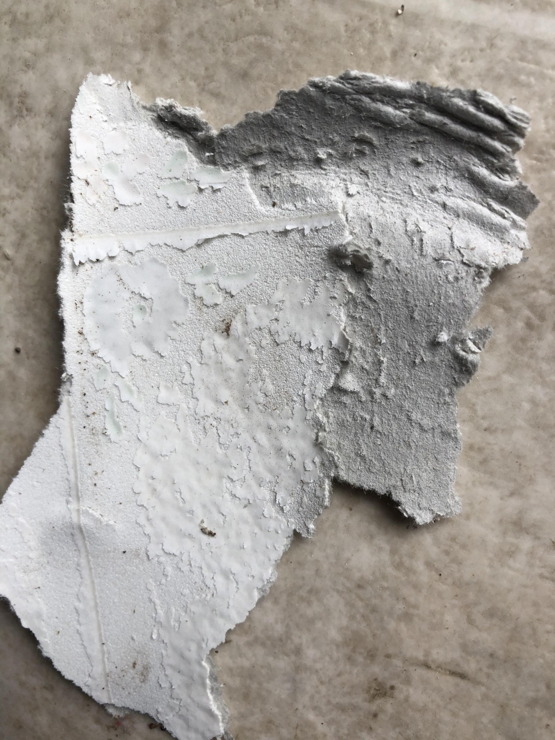 Asbestos?-62164b8f-532d-4119-b21e-f1cc09bdbdce_1547920534087.jpg