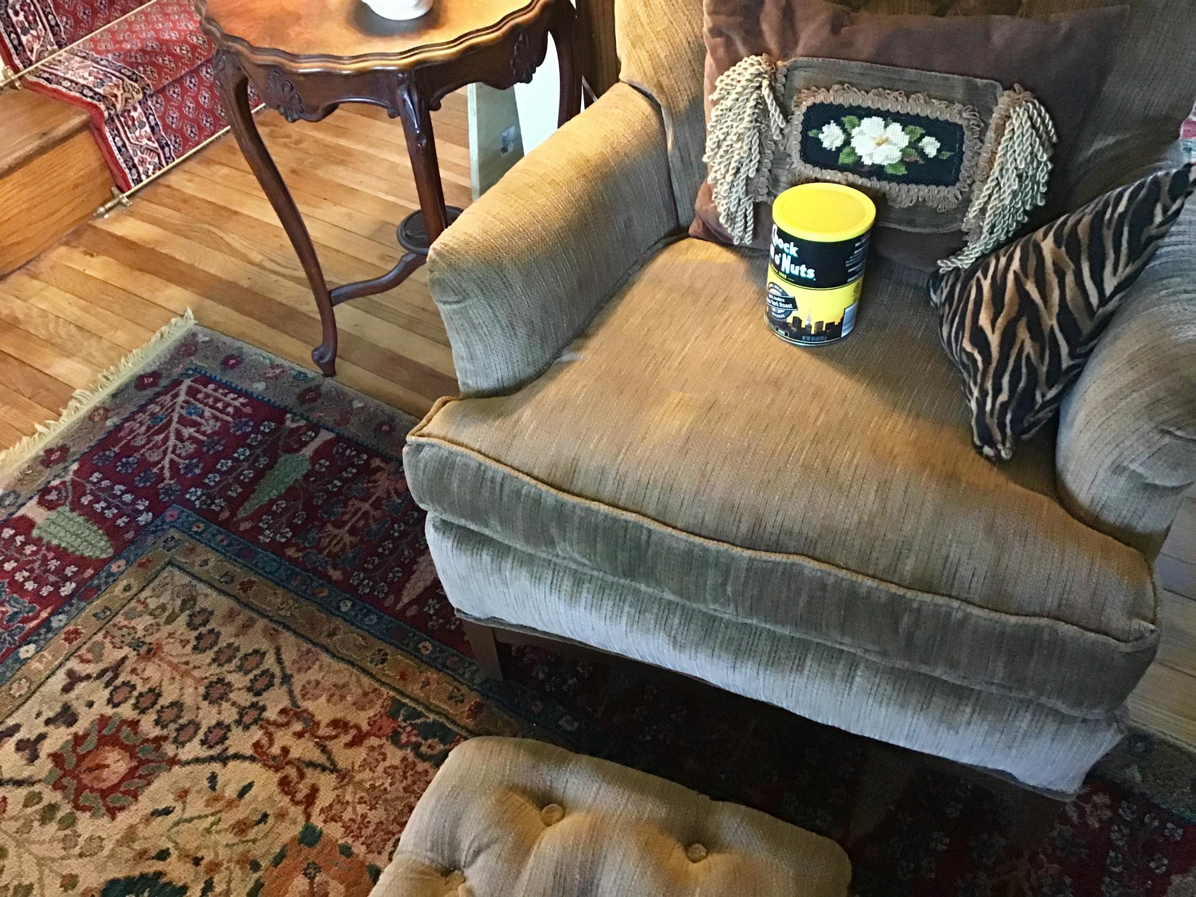 Keeping Dogs off furniture.-653183e8-500d-4aaf-938d-9049f6ffc9a0.jpg