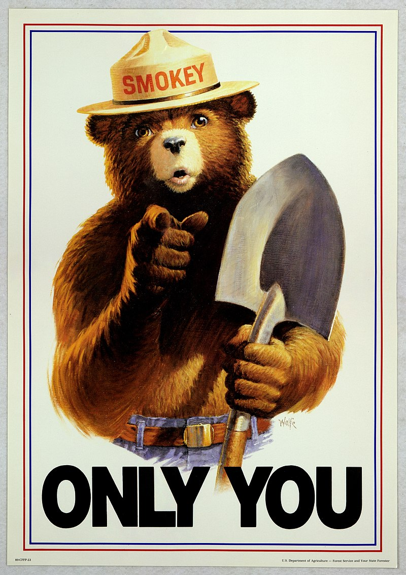 End days...-800px-uncle_sam_style_smokey_bear_only_you.jpg