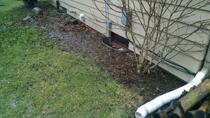 Standing Water In Backyard + Slow Leak In Basement-9.jpg