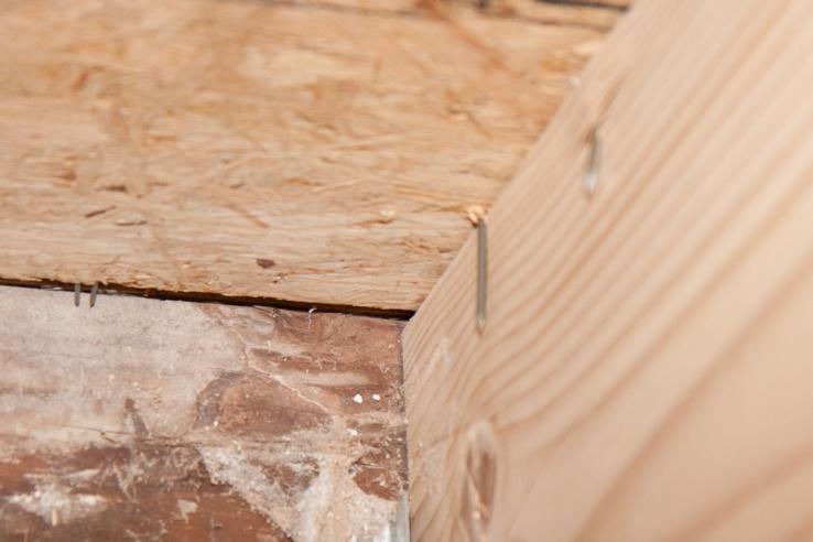 Adjusting Floor Joists?-_mg_5445.jpg