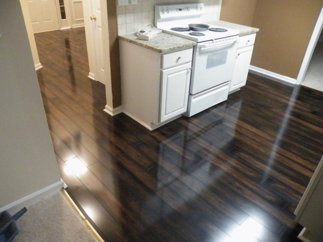 Laminate Floors Too Dark Aparat Feb 22 2009 062