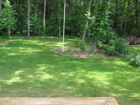 Remulching my yard is NOT an option, other suggestions? PICS-area2.jpg