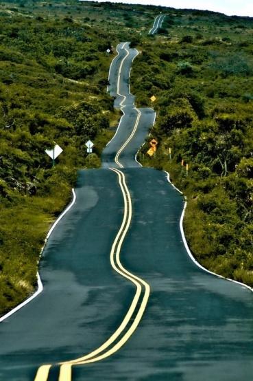 amazing paths-att0000554.jpg