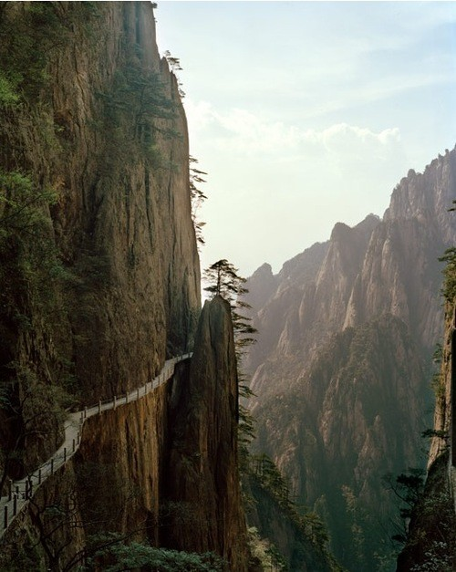 amazing paths-att000131315.jpg