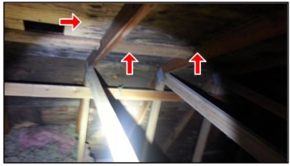 Attic Lumber Plywood With Dark Stians Roofing Siding