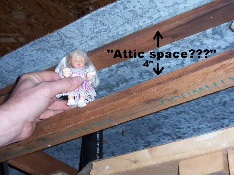 Adding a second toilet.-attic-space.jpg