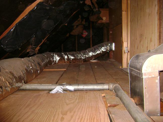 Insulating a 1 & a Half Story Cape - Help!-attic1.jpg