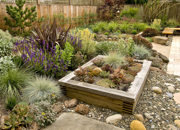 Trendy Ways to Update Your Backyard Landscaping