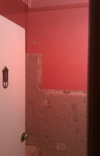 Thin-set or wet-bed mortar mix?-back-wall.jpg