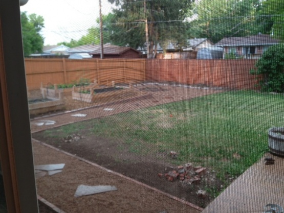 Need backyard ideas-back-yard-7.jpg