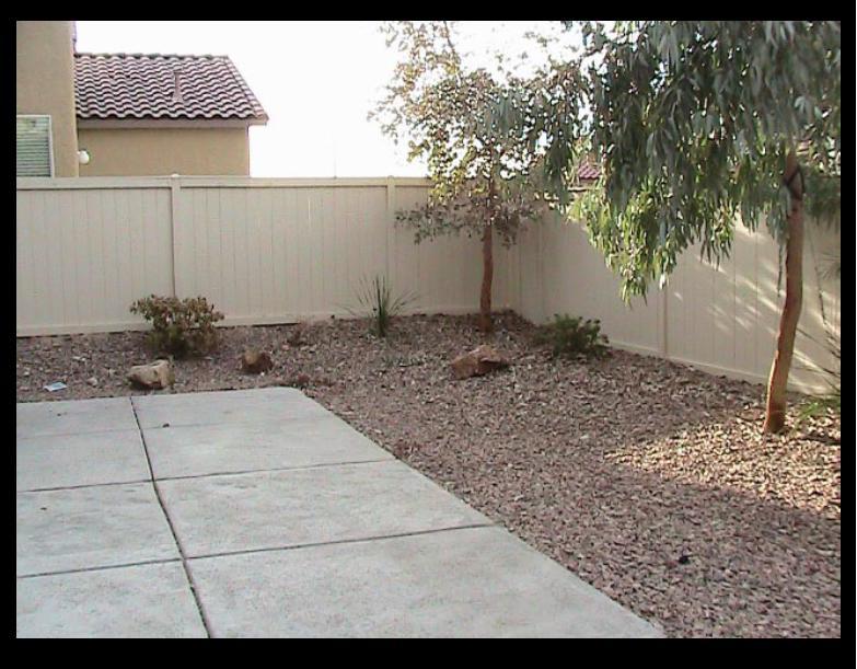 need help with pitiful back yard-back-yard.jpg