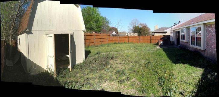 Overrun new backyard-backyard.jpg