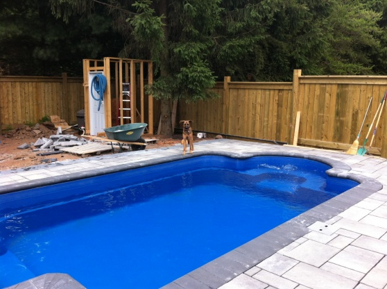 The Ultimate DIY Project - A Pool!-backyard4.jpg