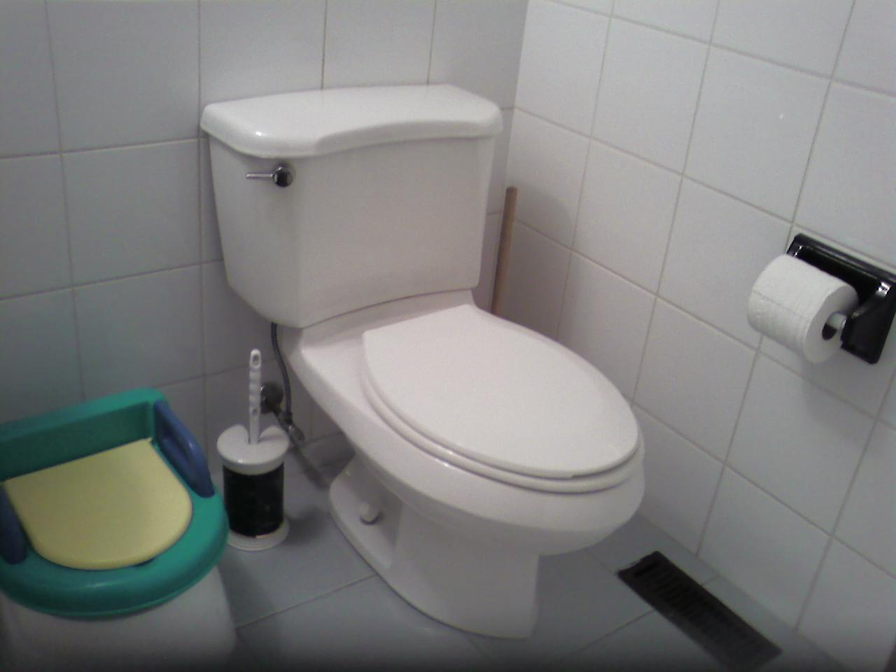 Slow Flushing Toilet Annoyances - Plumbing - DIY Home Improvement ...