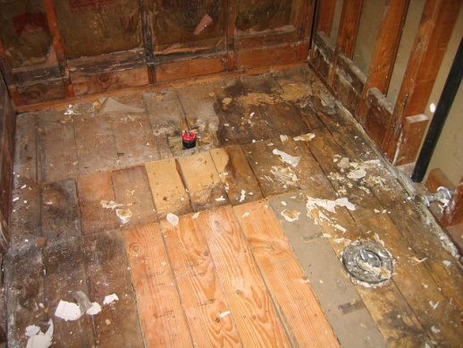 Bathroom remodel - I think it's time to call in the pros for part of this mess-bare-subfloor.jpg