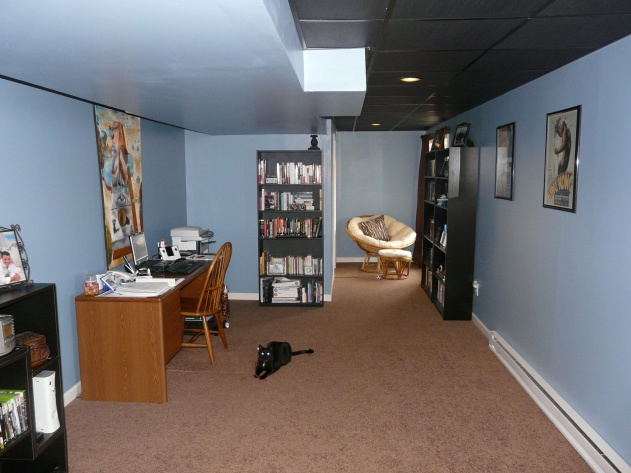 Basement Finishing - Movie Theater-basement-finished-003.jpg