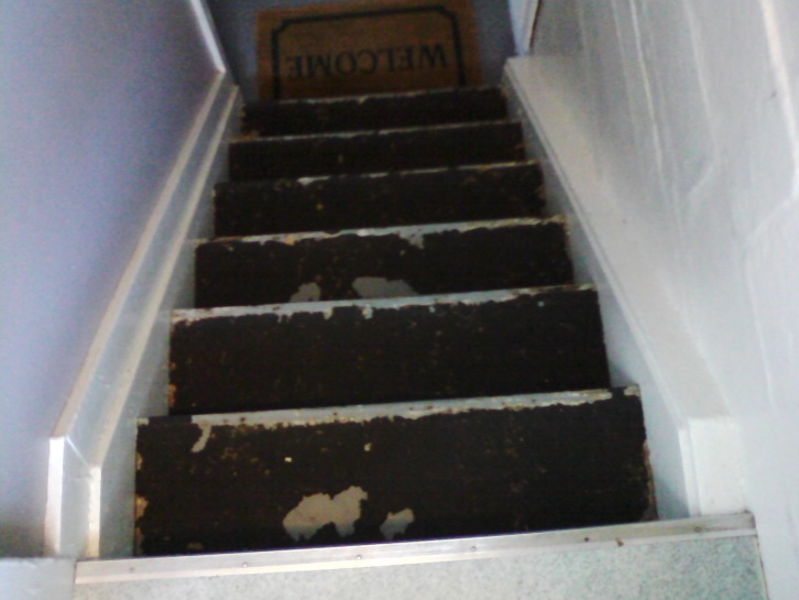 Vinyl tiles over tar adhesive-basement-steps.jpg