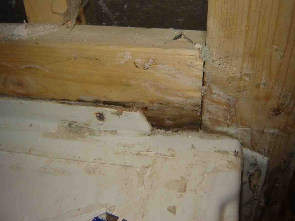 Mold On Framing Of Bathroom Wall   Remodeling   Page 2   DIY Chatroom Home  Improvement Forum