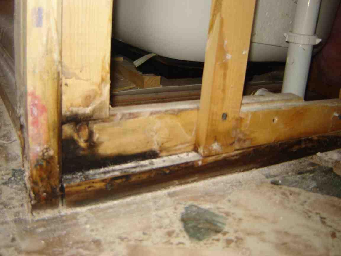 ... Mold On Framing Of Bathroom Wall Bath 2 ...