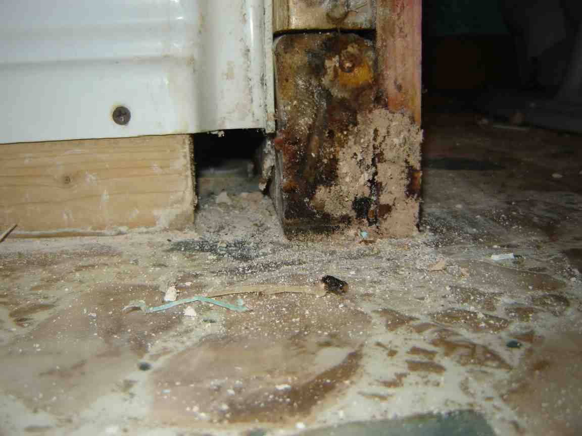 Mold on framing of bathroom wall-bath-3.jpg