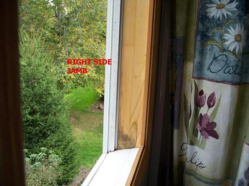 Replacement Windows Into Existing Pocket-bath-right-jamb-small-pic.jpg