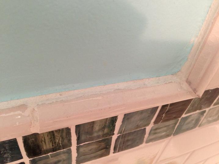 Advice on painting edge next to tile-bath_paint_1.jpg
