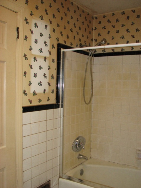 Tiling Shower walls-batha_before.jpg
