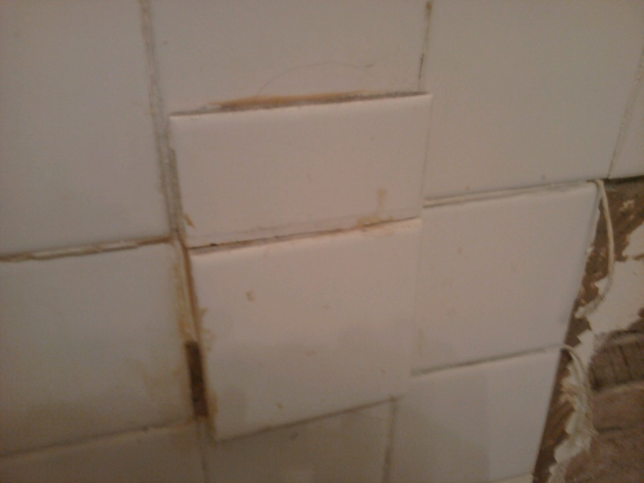 Newbie with bathroom remodel-bathdemo3.jpg