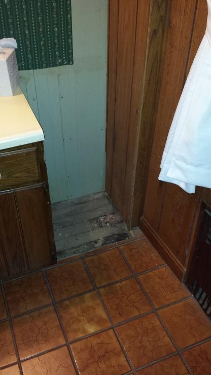 Bathroom Remodel (insulation,tile,demo)-bathold2.jpg