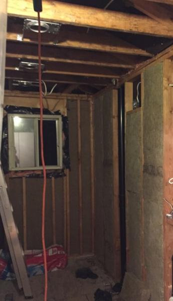 Vapour Barrier for Ceiling in Bathroom-bathroom-ceiling.jpg
