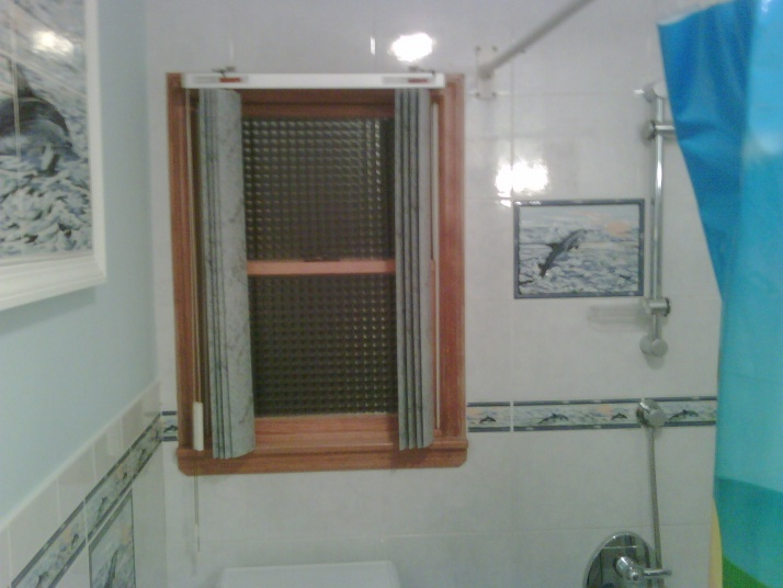 Bathroom Window / shower-bathroom-picture.jpg