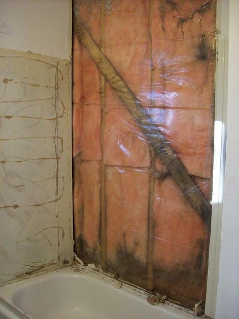 Newbie with Bathroom Mold question-bathroom-wall-tub.jpg