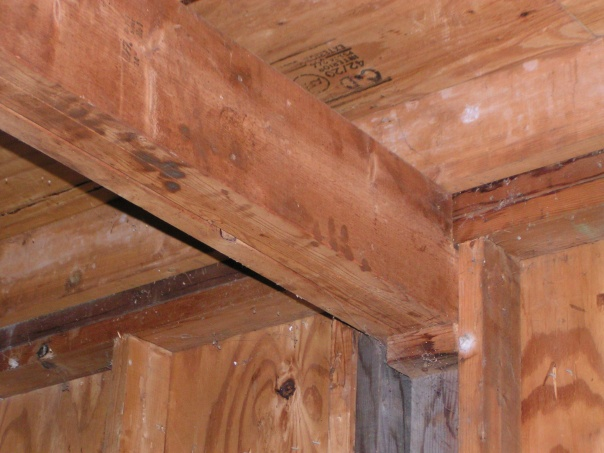 Garage ceiling joists and beam question-beam-support.jpg