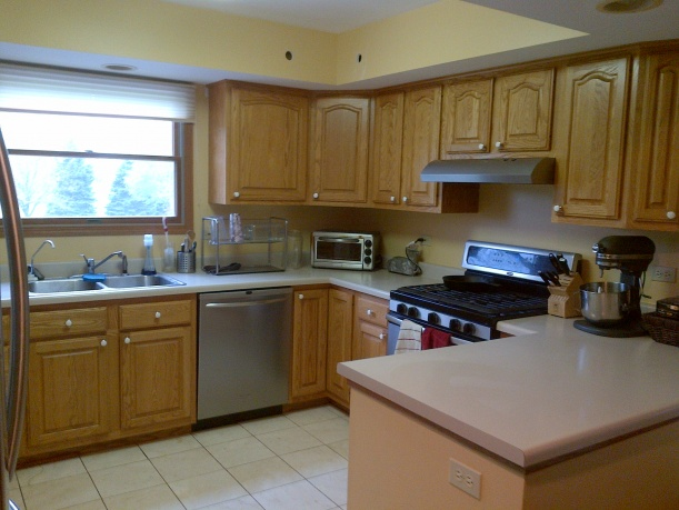 Kitchen Remodel-before-pic1.jpg