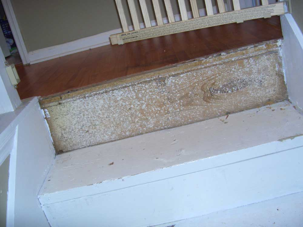 Stair help - Am I going about this correctly?-before2.jpg