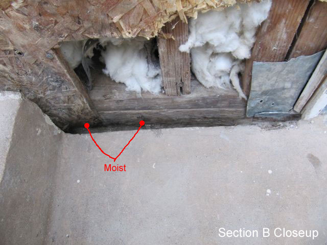 Sheathing below grade. What to do?-below-grade-2.jpg