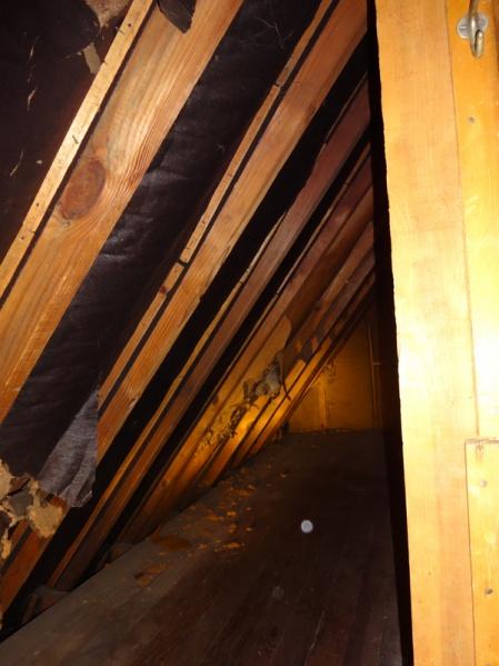 Insulating kneewalls vs roof in 1929 house-bigcubbyinside.jpg
