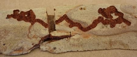 Is this Termite Damage?-break_off_piece.jpg