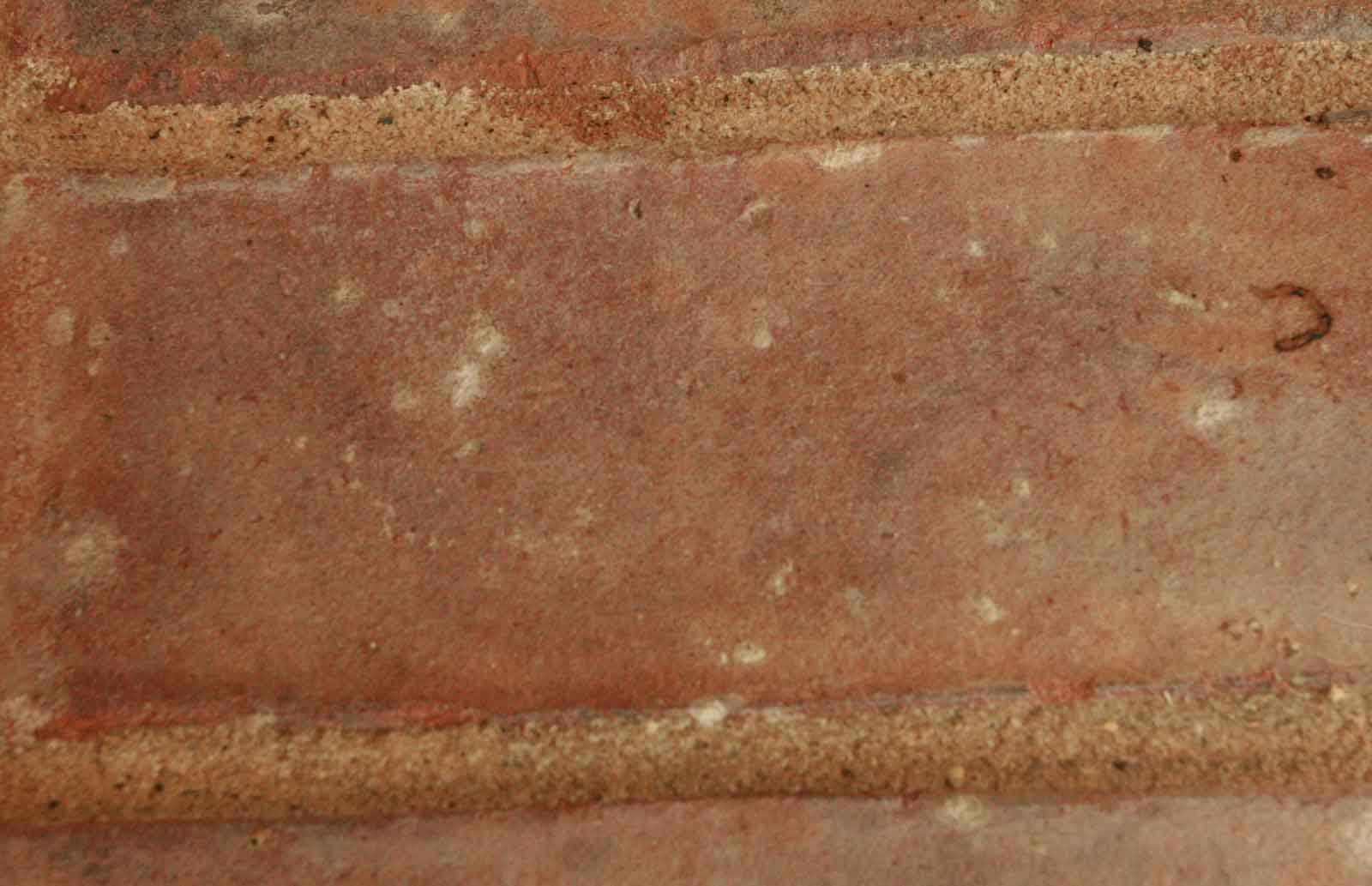 Brick haze on brick over slab patio-bricks_up_close.jpg